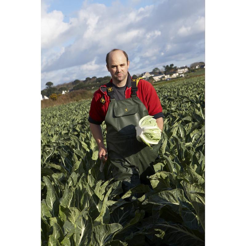 Armoric waterproof bib and braces for vegetable growers - Back